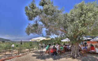 isaac's bar mitzvah shabbaton in galilee, israel. event planner