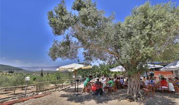 Isaac's Bar Mitzvah